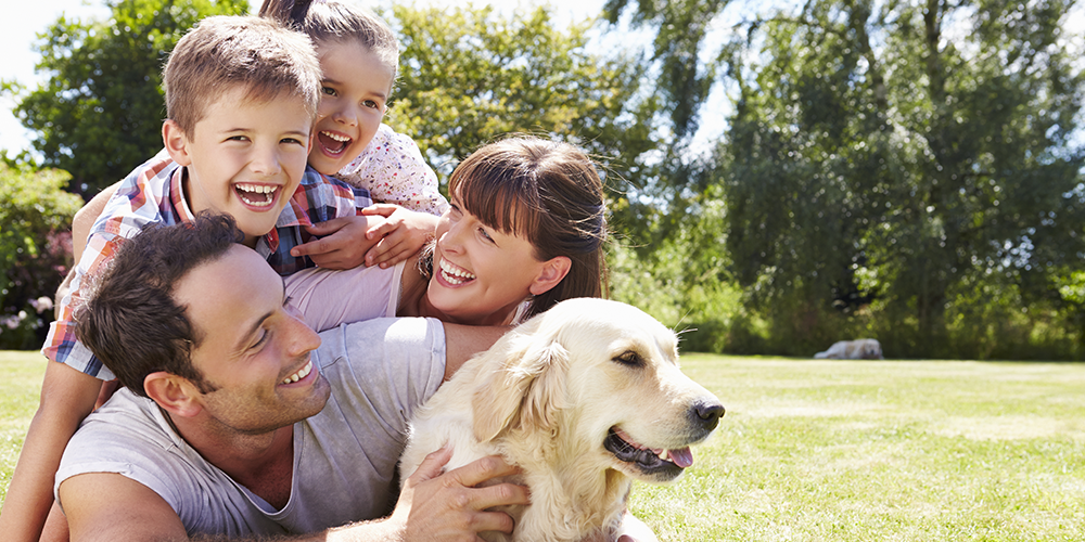 Family relaxes outdoors with their dog after heeding HVAC tips for pet owners.